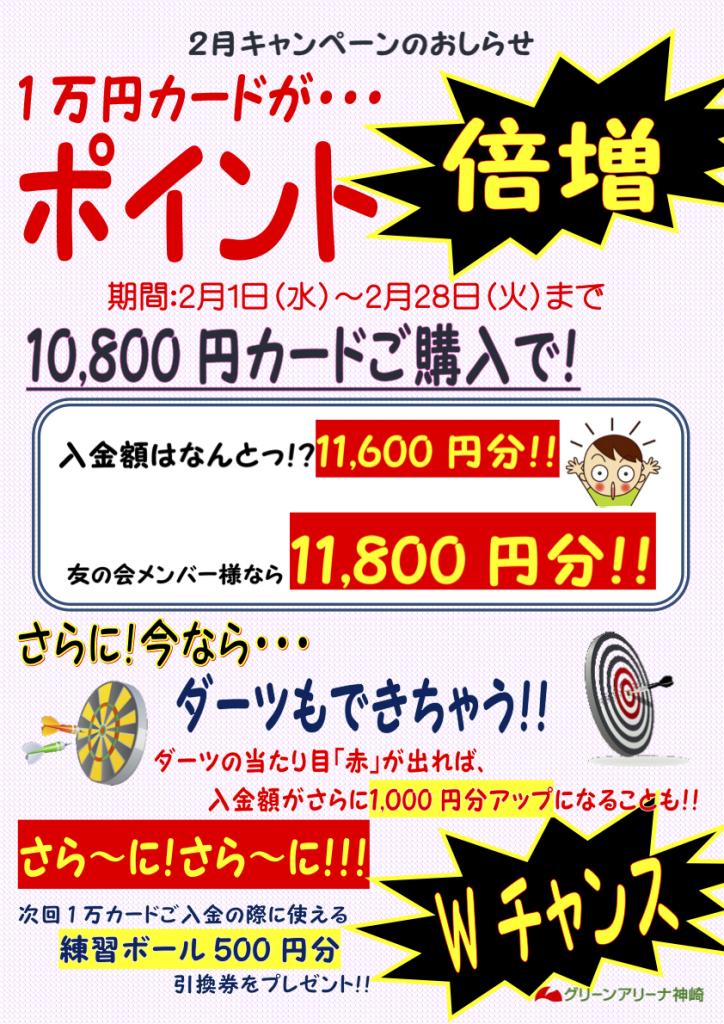 10000円カードCP201702